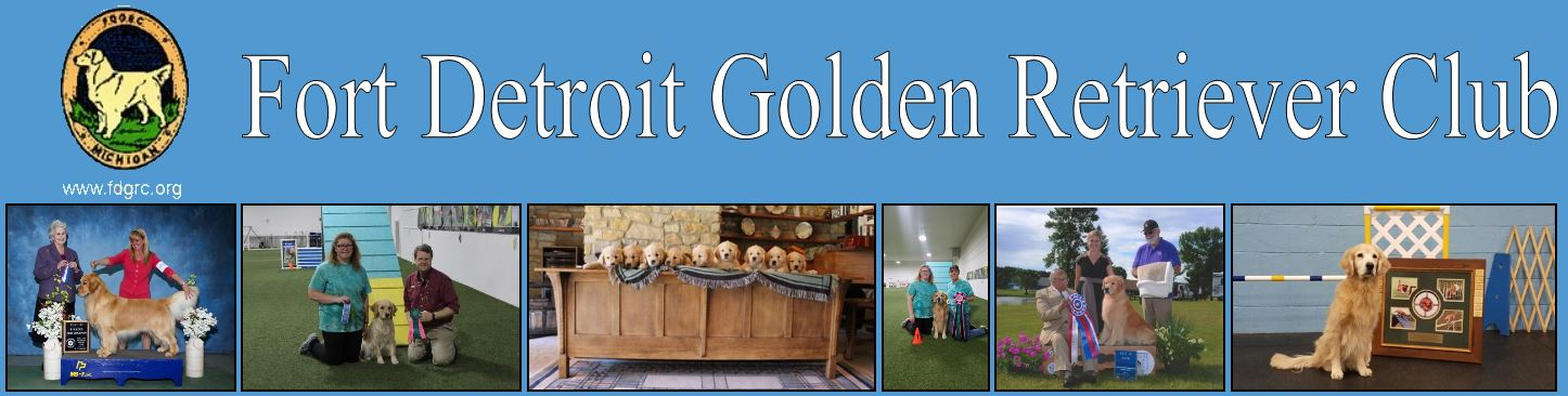 Fort Detroit Golden Retriever Club
